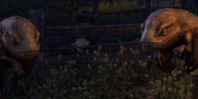 ESO Domestic Guar in Stonefalls