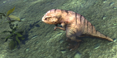 ESO Pet Guar in Water
