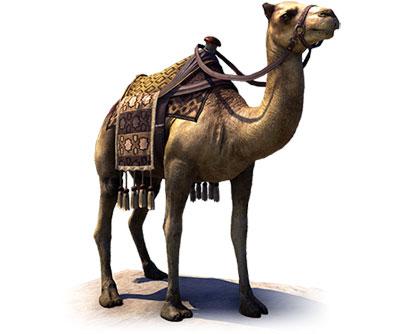 Hammerfell Camel Mount