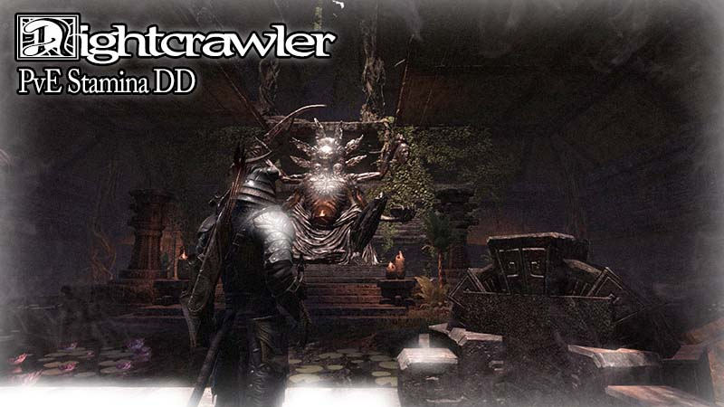 Nightcrawler (Budget PVE Stam DD)