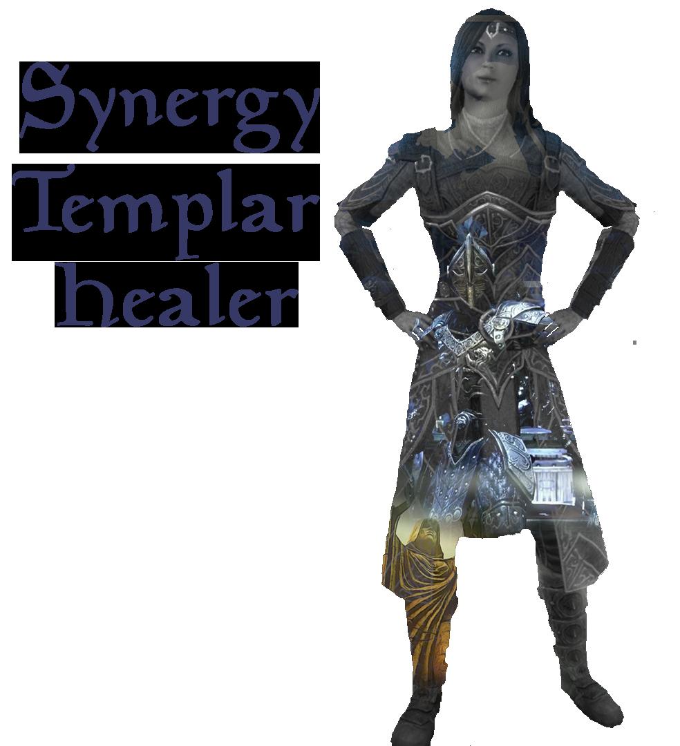 SYNERGY/BUFF HEALER 2.0 (PvE MagPlar)