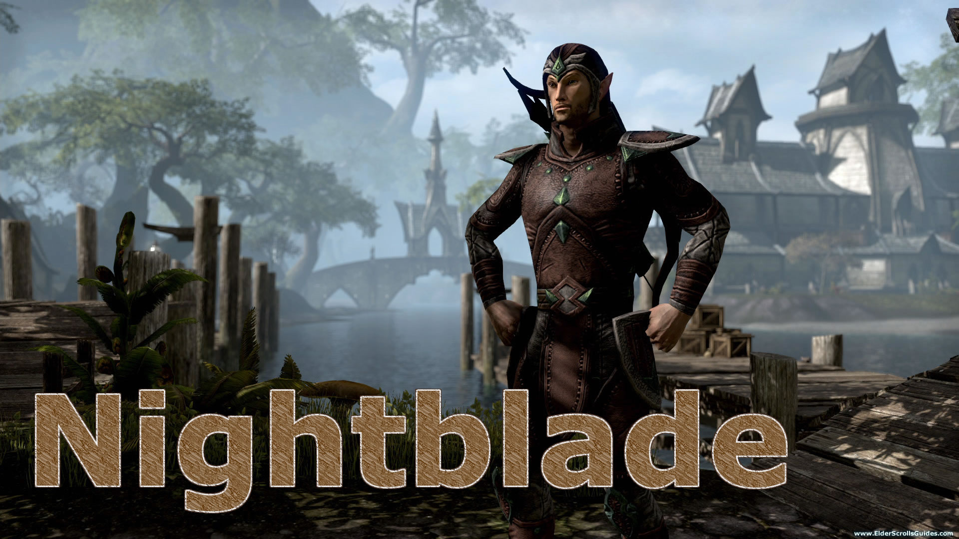 Stamblade PVE Leveling Build